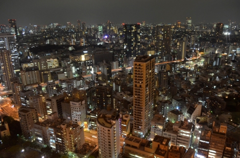 Sprawling Tokyo