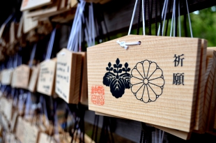 Rows upon rows of ema in the Meiji shrine