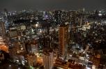 Tokyo's metropolitan sprawl stretching as far as the eye can see
