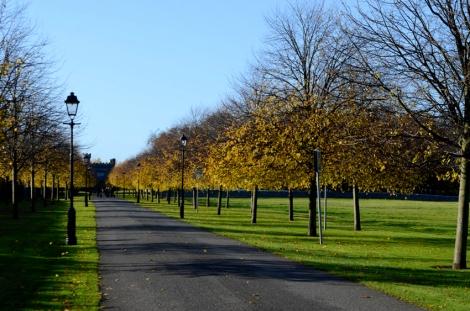 Pathway behind Irish Museum of Modern Art