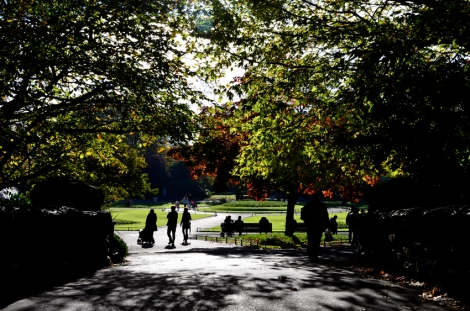 Looking over the bridge under the trees in St Stephens Green