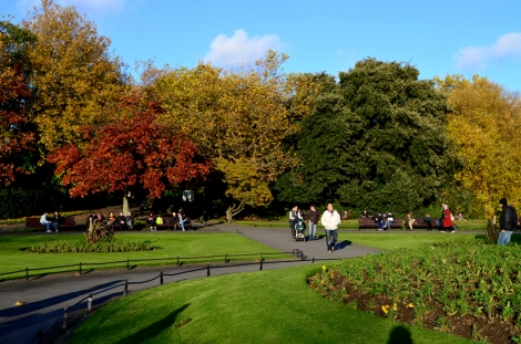Colourful trees surrounding the common on St Stephens Green